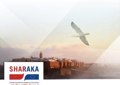 Maroc | Pratiques de mobilisation des diasporas