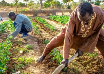Sahel | Résilience du secteur privé
