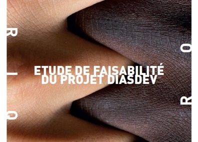 Europe / Afrique | Diaspora for Development