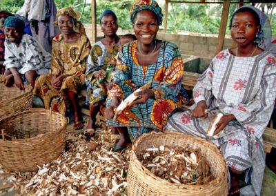 "Guinée | Etude de faisabilité ""Entrepreneures"""